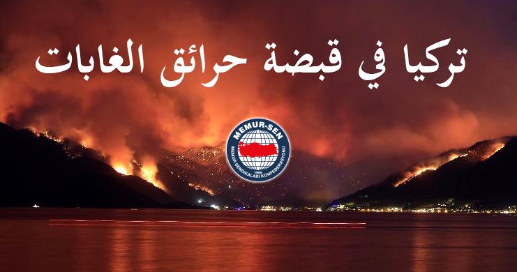 تركيا في قبضة حرائق الغابات